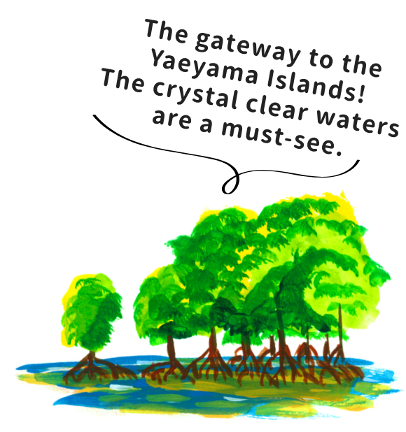 The gateway to the Yaeyama Islands! The crystal clear waters are a must-see.